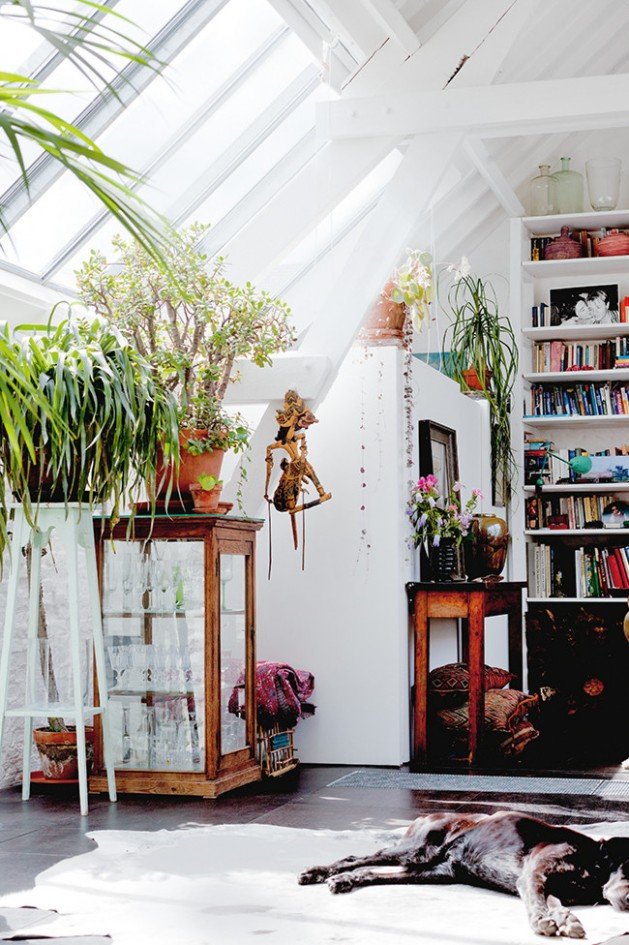 plants18